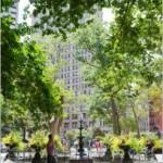 Oscar Wilde In New York