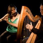 Somerset Folk Harp Festival: Michael Rooney